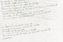 Carta romántica 14